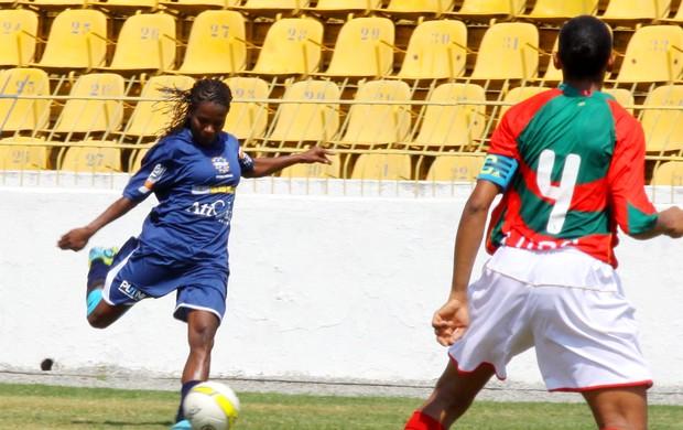 Formiga São José (Foto: Antonio Basílio/ PMSJC)