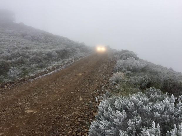 Vegeta��o amanheceu congelada nesta quinta (28) em Urupema (Foto: Jean Souza/RBS TV)