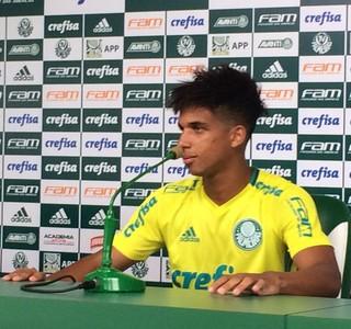 Vitinho Palmeiras (Foto: Felipe Zito)