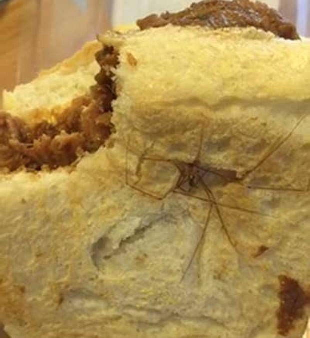 Chris Eastwood disse que ficou horrorizado ao encontrar aranha morta em seu sanduíche (Foto: Reprodução/YouTube/Chris Eastwood)
