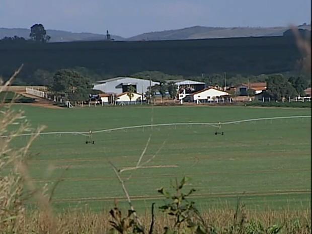 Funcionários foram contaminados quando chegavam à fazenda na última sexta-feira (Foto: Reprodução/TV Integração)
