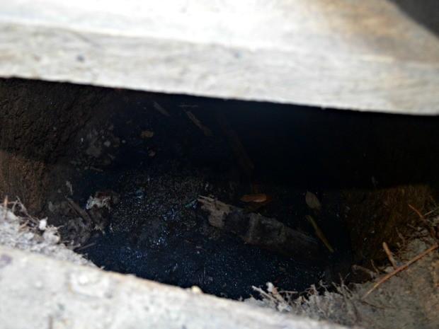 Criança foi achada em privada coberta de larvas  (Foto: Adelcimar Carvalho/G1)