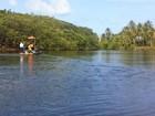 MP-AL apura prestação de contas da Associação do Peixe-Boi de Alagoas