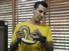 Jiboia rara é recuperada após furto ao Museu da Amazônia, em Manaus