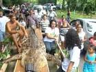 Crocodilo é enterrado com funeral e homenagens na Costa Rica