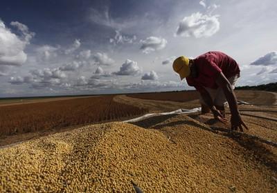 agricultura_soja_matopiba (Foto: Editora Globo)