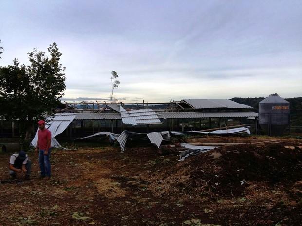 Propriedade rural em Chapecó registrou prejuízos após vento forte  (Foto: Eveline Poncio/RBS TV)