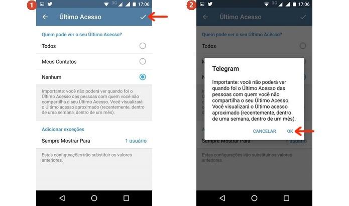 Confirmação das alterações no último acesso do Telegram (Foto: Reprodução/Raquel Freire)