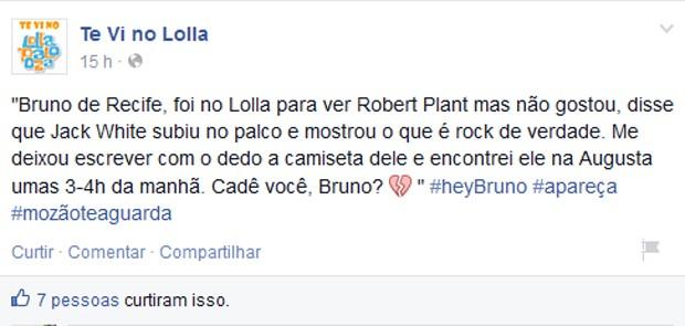 Post na página 'Te vi no Lolla' (Foto: Reprodução / Facebook)
