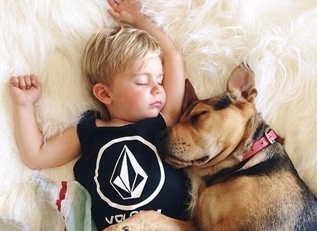 Famosos na web, os cochilos de Theo e Beau fazem sucesso no Instagram. Hoje, a dupla tem mais de 435 mil seguidores (Foto: Instagram)