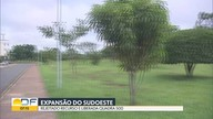 Parque ecológico pode ser destruído para construção de quadra