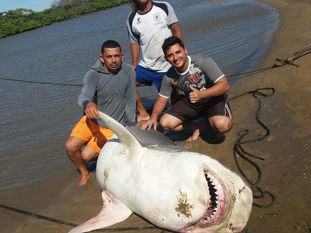 Tubarão foi levado para Atafona (Foto: Matheus Manhães/Arquivo Pessoal)