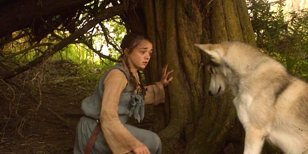 Último encontro de Arya e Nymeria na primeira temporada de GoT (Foto: Divulgação )