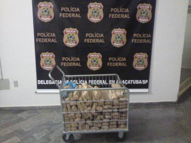 Parte da droga apreendida pela Polícia Federal de Araçatuba  (Foto: Divulgação/Polícia Federal)