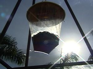 Armadilhas ajudam no combate aos insetos  (Foto: Reprodução/TV Integração)
