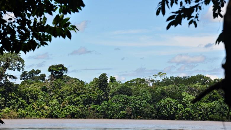 rio-madeira-amazonia-amazonas-parque-nacional-mapinguari (Foto: Creative Commons/Renato Gaiga)