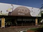 Golpe na bilheteria do zoo do DF desvia R$ 635 mil, diz MP de Contas