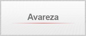Selo - Avareza (Foto: G1)