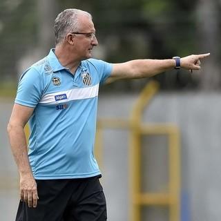 Dorival Júnior, Santos (Foto: Ivan Storti/Santos FC)