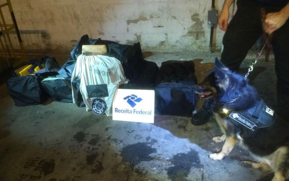 Receita Federal apreende 218,5 kg de cocaína, em Salvador (Foto: Divulgação/Receita Federal)