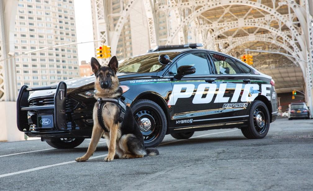 Ford Fusion Police Responder (Foto: Divulgação)