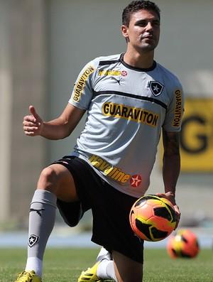 bolivar botafogo treino (Foto: Satiro Sodré / AGIF)