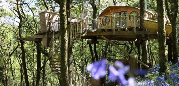 As mais lindas casas na árvore (Foto: Reprodução)