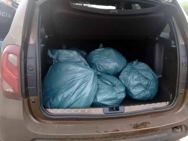 72 quilos de maconha eram transportados nos porta-malas de dois carros na rodovia Engenheiro Coelho e Limeira (Foto: Divulgação/Polícia Civil)