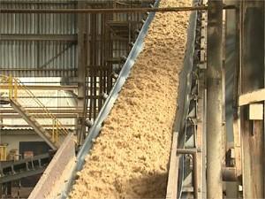 Bagaço de cana-de-açúcar em usina de Sertãozinho, SP (Foto: Reprodução/EPTV)