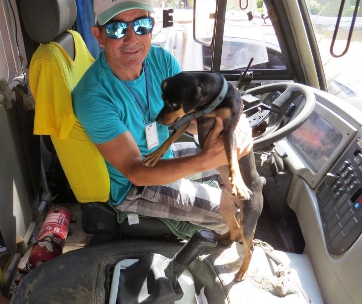 Cão Pablo no ônibus
