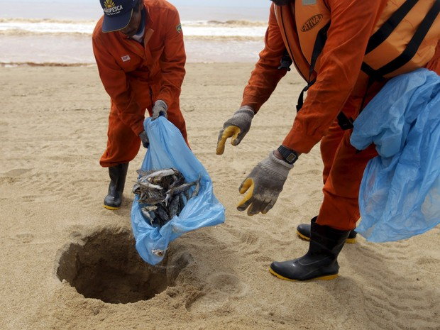 Pescadores contratados pela mineradora Samarco, cujos donos são a Vale e a australiana BHP, enterram peixes mortos da praia de Povoação, no Espírito Santo. O local foi inundado por lama após o rompimento de barragens da empresa em Minas Gerais (Foto: Ricardo Moraes/Reuters)