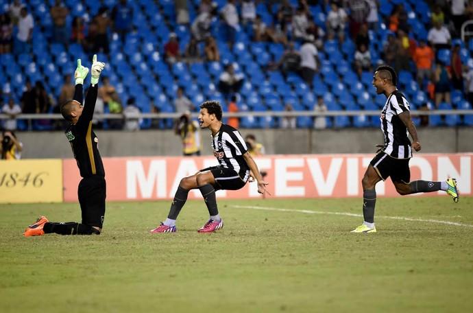 Botafogo x Fluminense, comemoração 2 (Foto: André Durão)