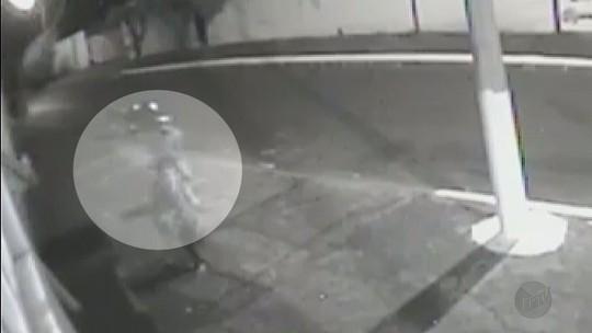 Gestante é agredida com chutes durante assalto em Pitangueiras, SP; veja vídeo