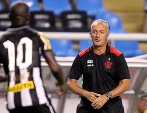 Seedorf e Dorival Junior na partida do Flamengo contra o Botafogo (Foto: Alexandre Cassiano / Ag. O Globo)