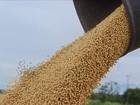 Conab divulga a terceira estimativa para a safra de grãos 2015/2016