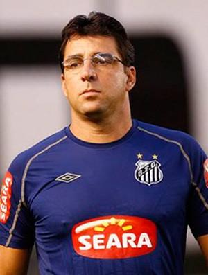 marcelo martelotte santos (Foto: Ricardo Saibun / Site Oficial do Santos)