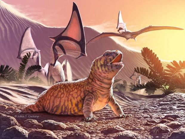 Ilustração da espécie recém-descoberta de lagarto Gueragama sulamericana  (Foto: Julius Csotonyi/Divulgação)