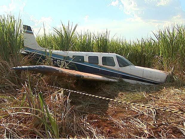 Avião fez pouso forçado em canavial em Guariba, SP (Foto: Paulo Souza/EPTV)