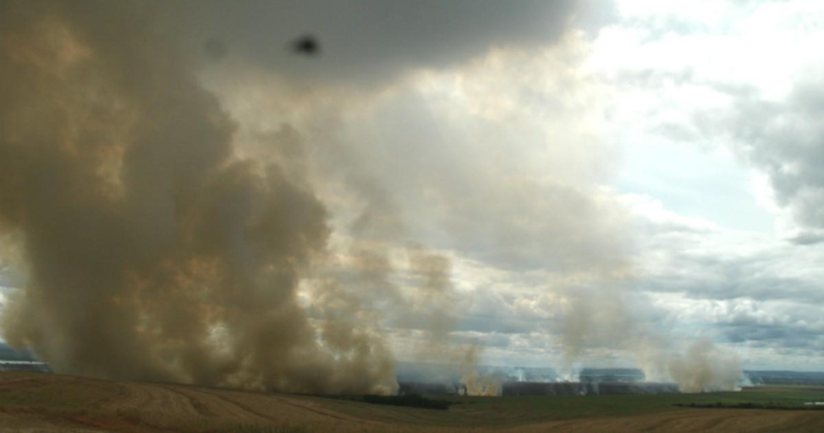 Incêndios destroem seis mil hectares de vegetação de Ilha Grande ... - Globo.com