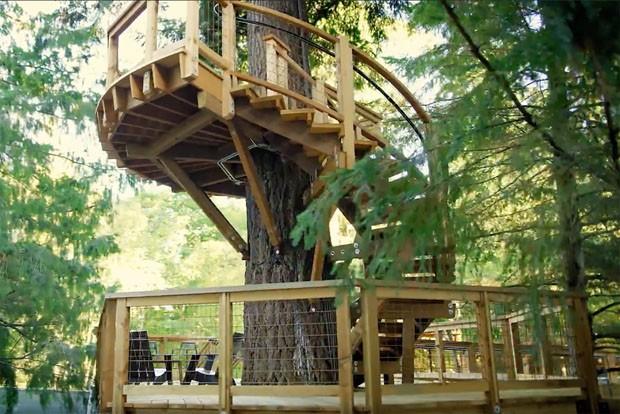 Microsoft está construindo escritório em casa na árvore  (Foto: Divulgação)