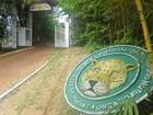 'Cachoeira da Onça' é opção de ecoturismo próximo a Manaus