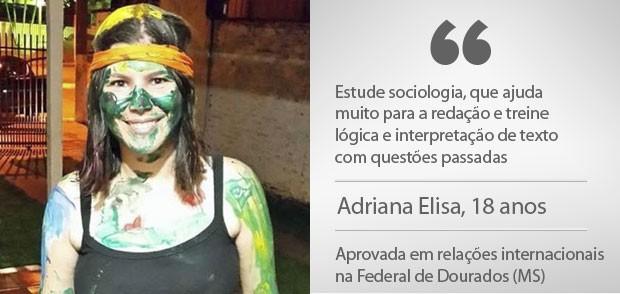 arte adriana (Foto: G1)