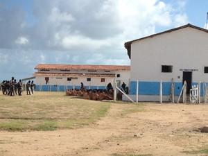 Policiais realizam operação pente-fino no presídio do Roger em João Pessoa (Foto: Walter Paparazzo/G1)