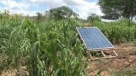 Produtores investem em tecnologia para driblar efeitos da seca, em Brumado
