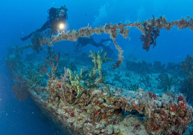 Corais tomaram conta da parte externa do navio (Foto: Reuters/Stephen Frink/Florida Keys News Bureau)