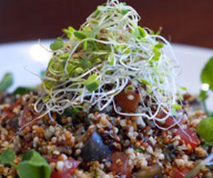 Salada de quinoa ao curry com berinjela