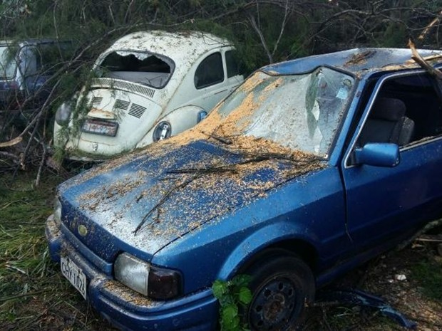 Chuva derrubou árvores sobre três carros na região de Avaré (Foto: Adolfo Lima/TV TEM)