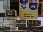Batalhão Ambiental apreende 81 pássaros silvestres em Arapiraca