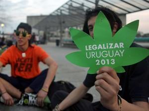 Câmara do Uruguai aprova legalização da venda da maconha (Foto: Pablo Bielli/AFP)