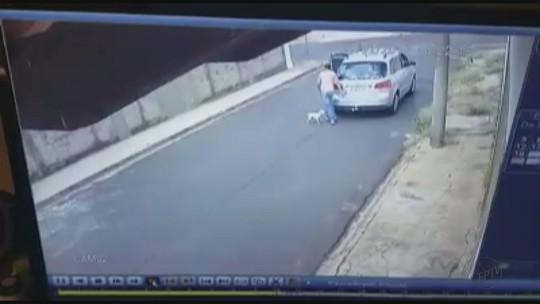 Mulher que abandonou cão diz que o resgatou em rodovia e se arrependeu